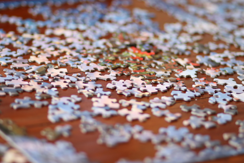nature puzzle.jpg
